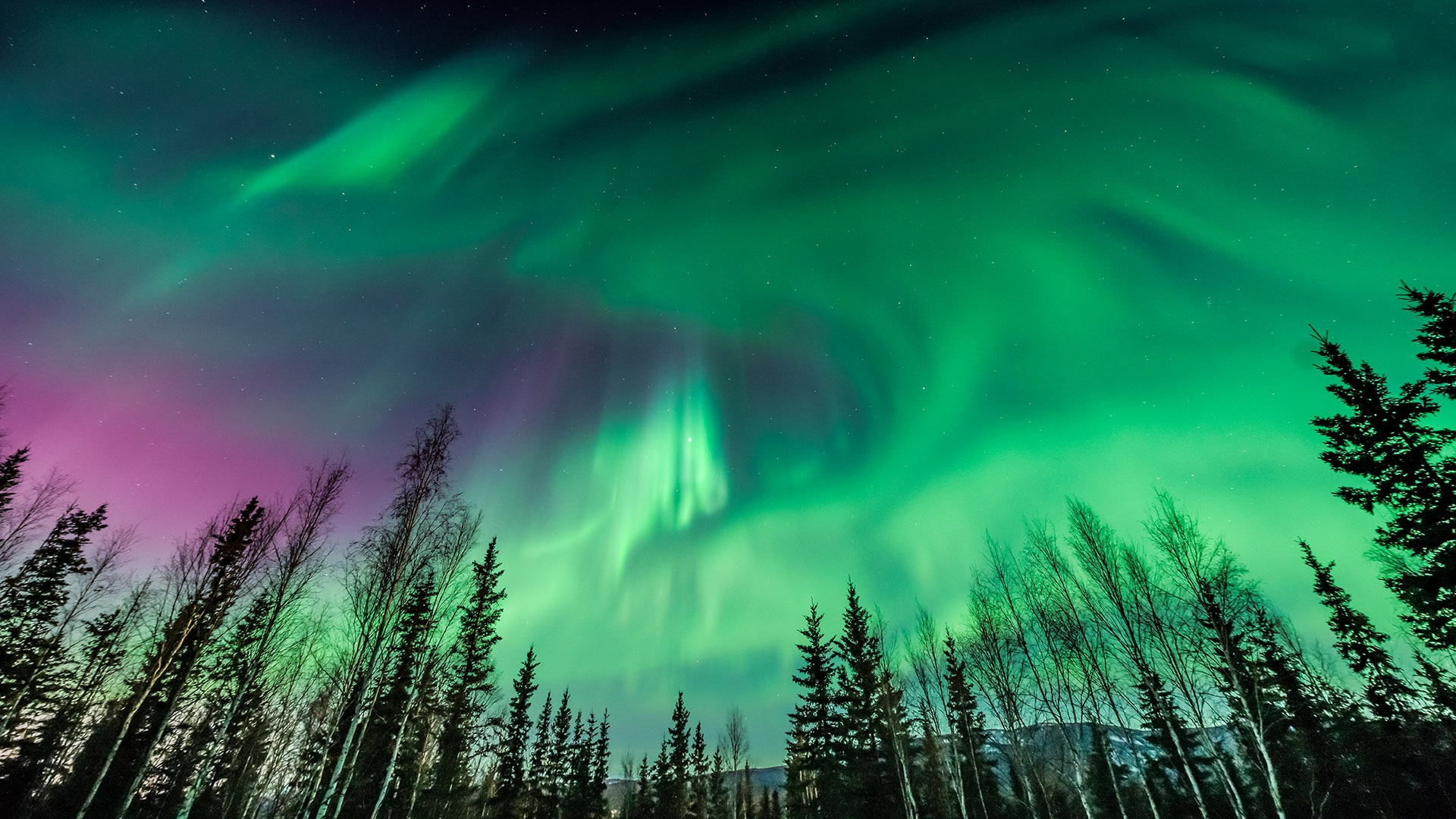 They can be seen from space and 5 other things you didn't know about the northern lights