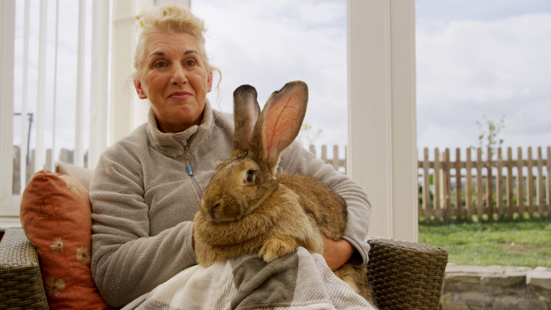 Meet the world's biggest bunnies
