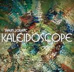Moncton's Shaun LeBlanc Launching Kaleidoscope Thursday