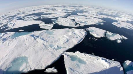 climate change-large.jpg