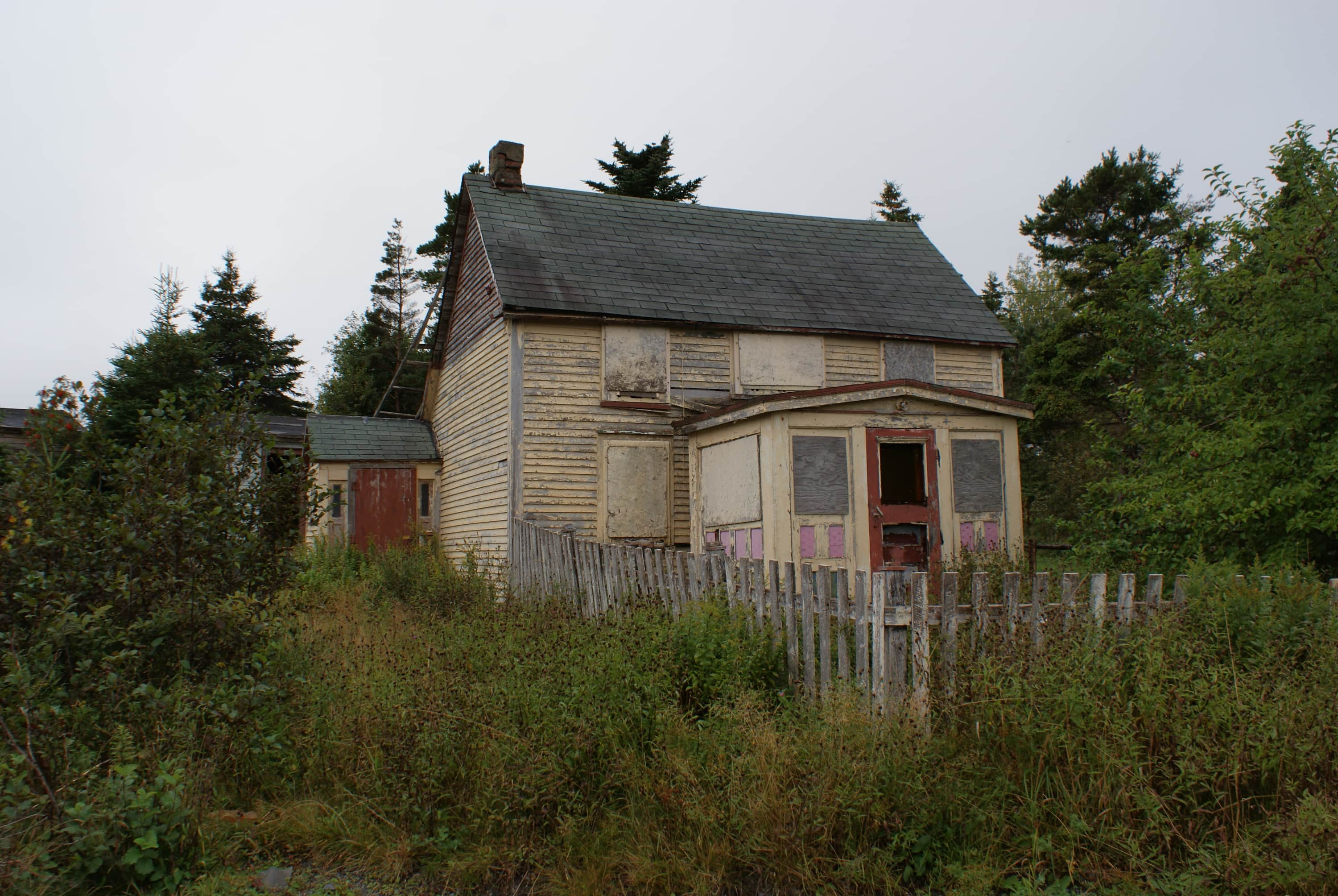 Seen on the drive from brigus to avondale seen for Newfoundland houses
