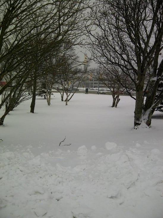 snowside2.JPG