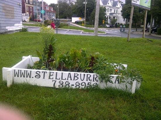 St. John's-20120829-00792.jpg