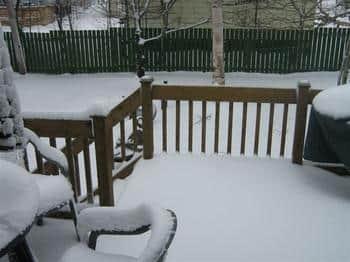 Gander Snow.JPG