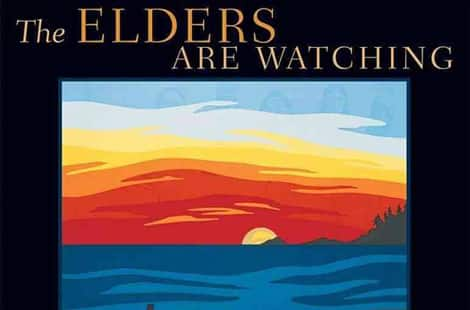 Book cover: The elders are watching
