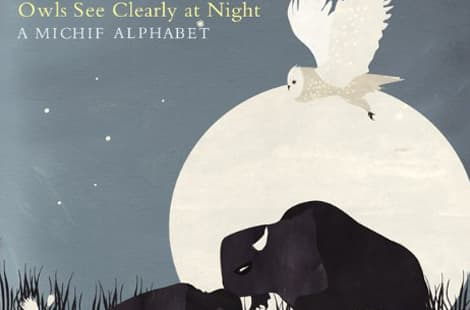 Book cover: Owls see clearly at night
