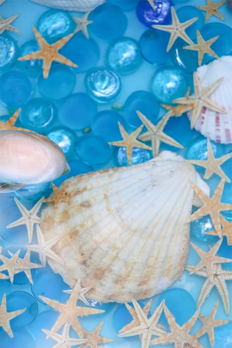 Glass gems, seashells and water.