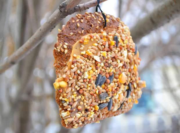 A finished stale bread birdfeeder.
