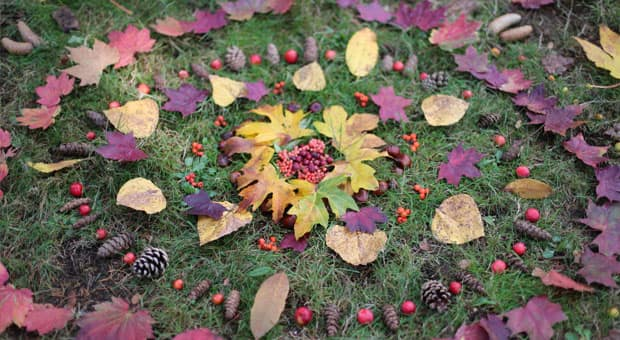 Nature Craft Diy Leaf Mandala Play Cbc Parents