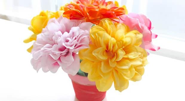 Colourful flowers in a pot.