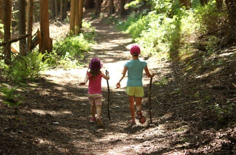 Kids hiking on a trail