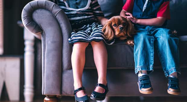 Two children sitting on a couch with a dog