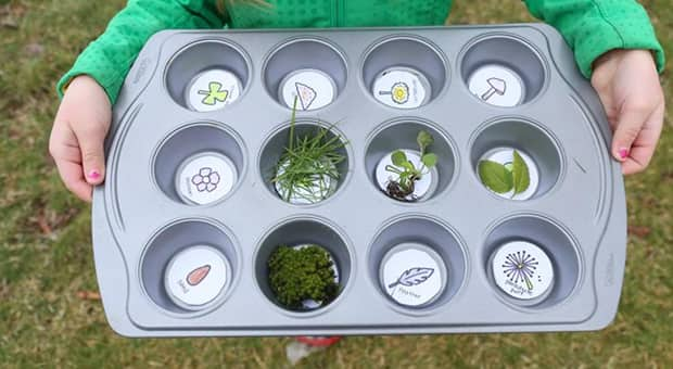 Girl holds a muffin tray with pictures of items in the base of each cup alongside the found nature items they're associated with