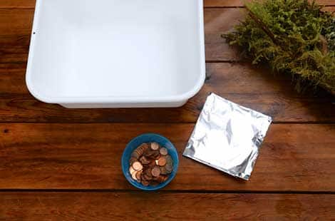 A tub full of water, a bowl of pennies and a piece of tin foil.