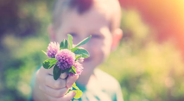 A little boy smiling and holding purple flowers to the camera
