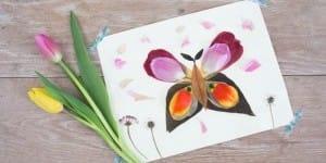 FlowerButterfly_Daisy_lead