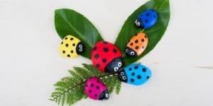 LadybugRocks_Daisy_lead