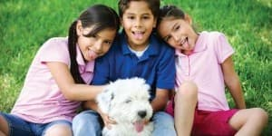 Picking-pet-thumb-620x336-226532