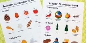 autumnscavengerhunt_lead4_snordholtmcphee