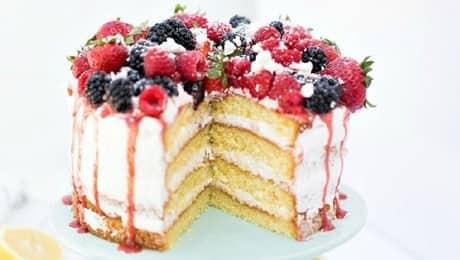SPONGE-CAKE-LEAD