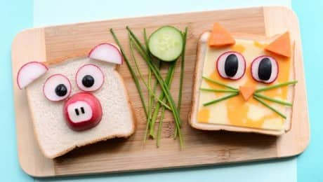animalsandwiches_lead_jdubien