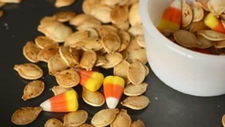 pumpkinseeds_lead_jcurrie