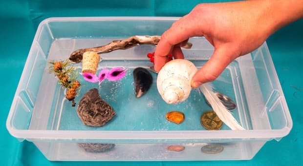 Sink Or Swim Water Activity Play Cbc Parents