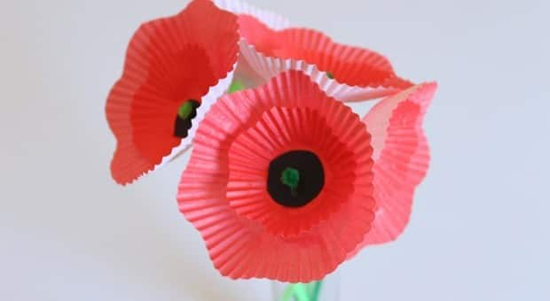 A cupcake liner poppy bouquet.