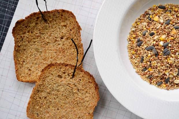 Два ломтика хлеба и миску птичий корм