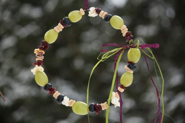 A bird feeder made with grapes, blueberries, cereal and popcorn.