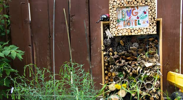 A completed backyard bug hotel.