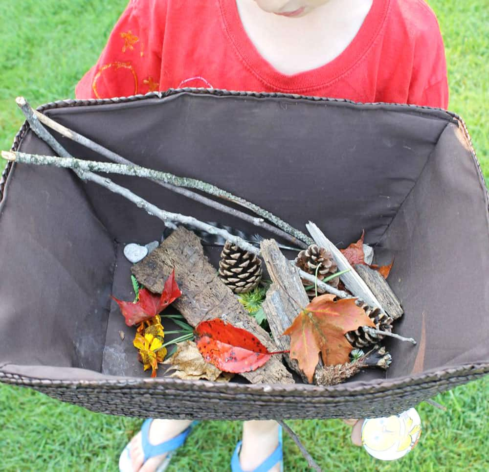 A child holds a bin of leaves and other nature bits.