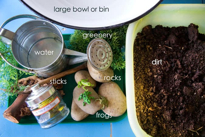 Materials used for this project: large bowl, watering can of water, plastic greenery, rocks of various sizes, sticks, plastic toy frogs and dirt.