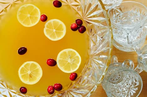 Fruit punch with lemon slices and cranberries.