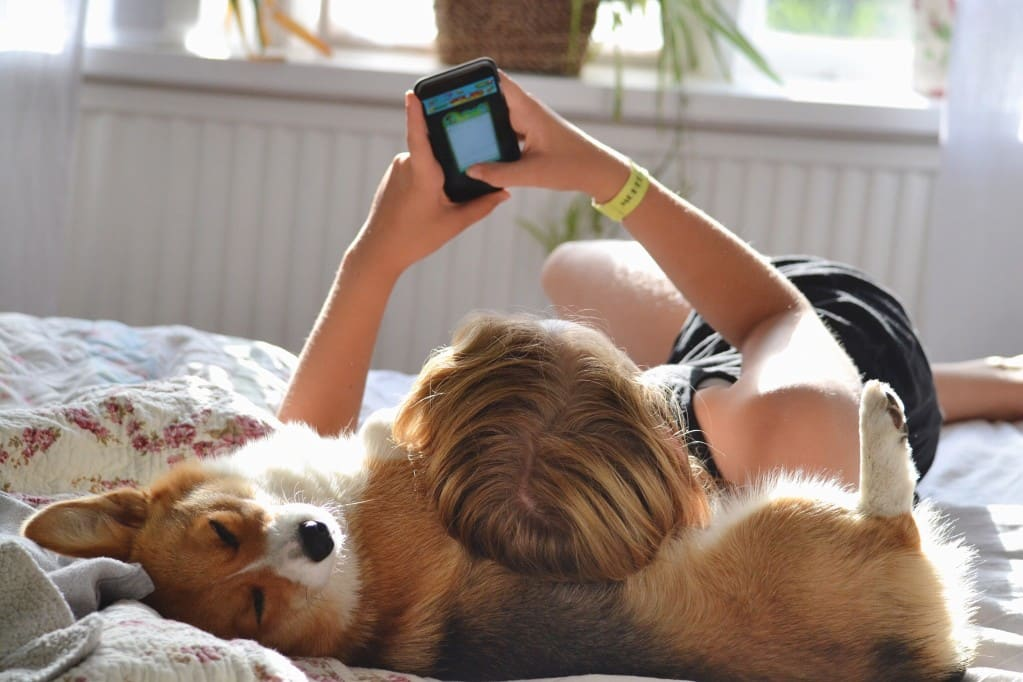 teen lying on dog in bed while scrolling through phone