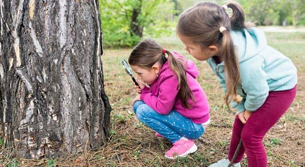 Little girls play examine a tree with magnifying glass