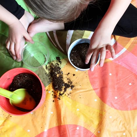 A child places seeds in a plastic cup full of soil.