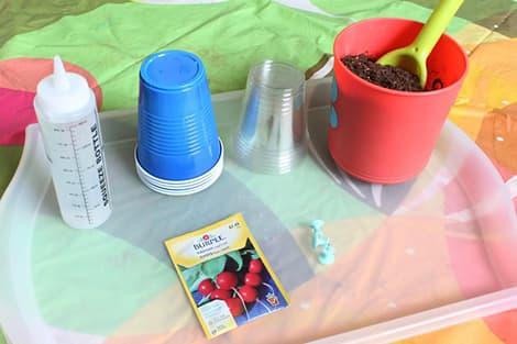 Supplies to make mini greenhouses