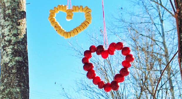 Bird feeders in the shape of hearts.