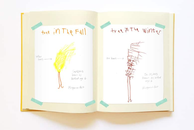 A child's drawings of a tree in different seasons.