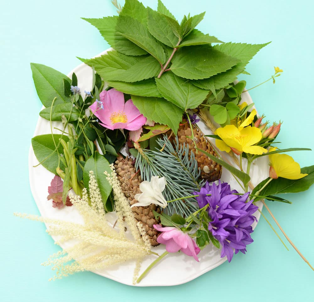 A big pile of leaves, flowers, branches, stems and more.