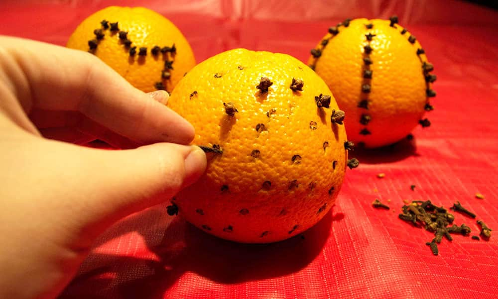Oranges studded with cloves.