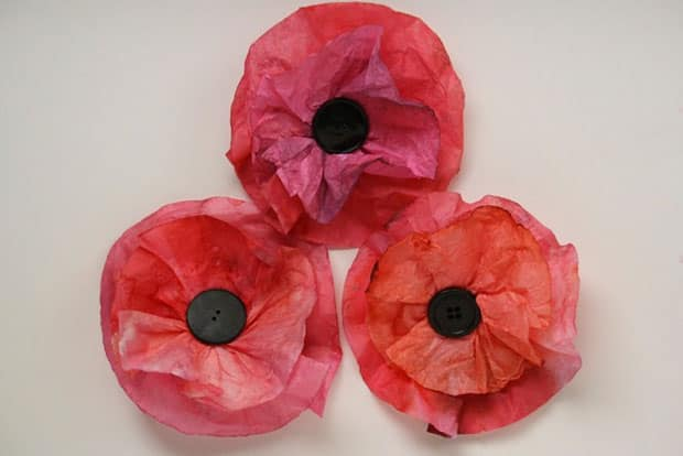 remembrance day craft coffee filter poppies play