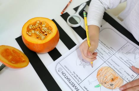 The mini pumpkin without its top so the seeds can be seen, as a child writes on the sheet what the inside looks like