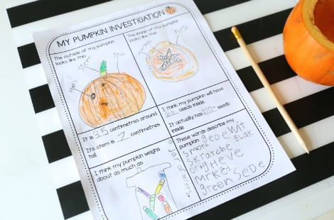 The 'My Pumpkin Investigation' sheet all filled out with pictures and observations about the mini pumpkin