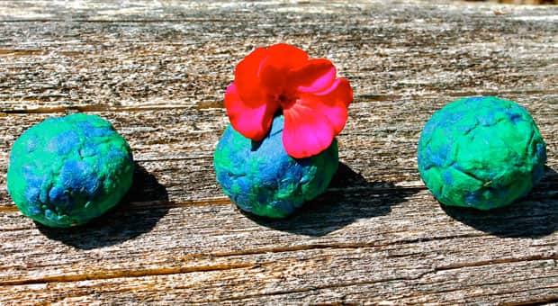 Diy Earth Day Wildflower Seed Bombs Play Cbc Parents