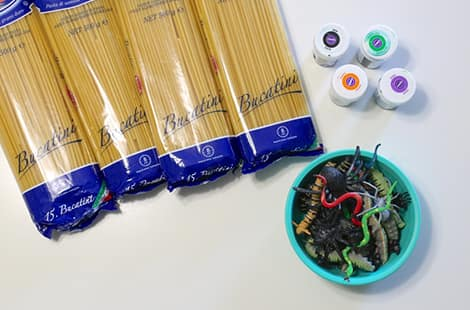 Dried spaghetti noodles, plastic creepy crawler toys, food colouring.