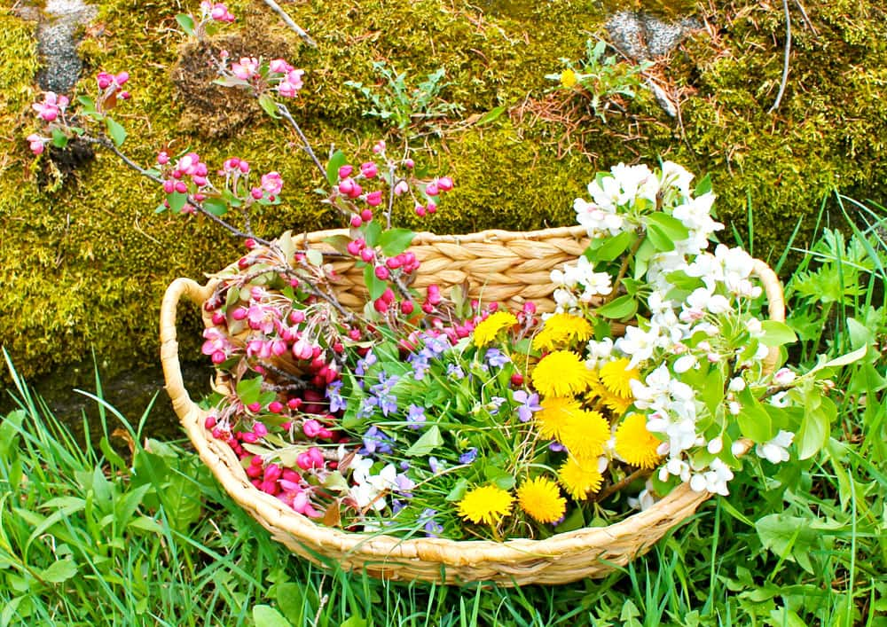 A basket of spring flowers.