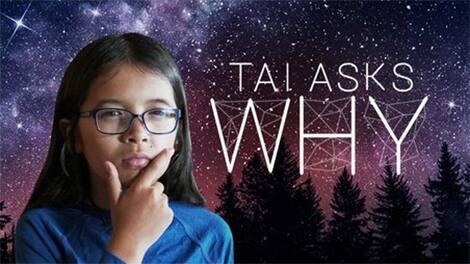 Tai Asks Why show logo