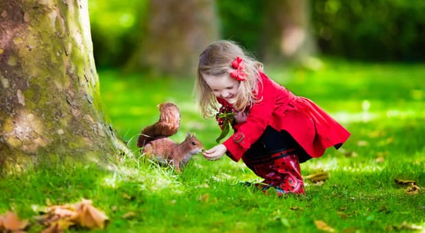 a young girl feeds a squirrel in a park